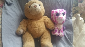 willie bears